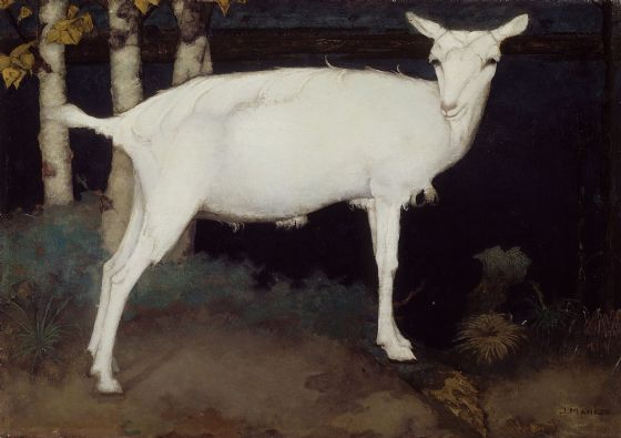 Mankes, Jan: Young White Goat. Fine Art Animal Print/Poster. Sizes: A4/A3/A2/A1 (00514)